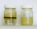 Bilge Bath oil
